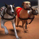 Jeu Greyhound Racing