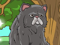Jeu Fluffy Cat