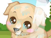 Jouer à Labrador Care