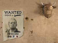Jeu Outlaw's Escape