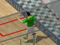 Jeu Squash Game