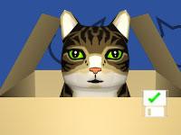 Jeu Cat Box Bowling