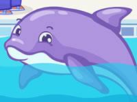 Jeu Dolphin Slacking