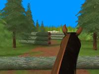Jeu Sauter des obstacles à cheval