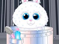 Jouer à Animaux Stars - Boule de Neige
