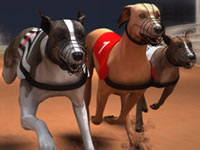 Jeu gratuit Greyhound Racing