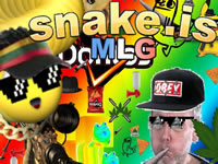 Jeu Snake.is MLG Edition