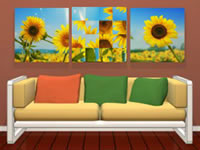 Jeu Amajeto Sunflowers