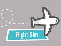 Jeu gratuit Flight Sim