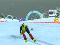 Jeu Alpine Ski Master