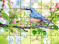 Jeu Jigsaw Puzzle Spring