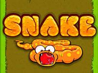 Jeu Snake Game