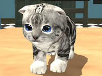 Jeu gratuit Cat Simulator Kitty Craft