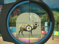Jeu gratuit Hunter 3D