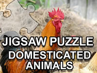 Jeu Jigsaw Puzzle Domesticated Animals