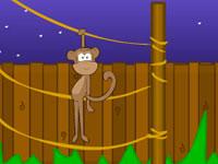 Jeu gratuit Toon Escape - Zoo