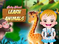 Jeu Hazel apprend des choses sur les animaux