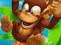 Jeu Monkey Bounce