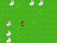 Jeu Bunny Bunny Boom