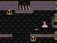 Jeu gratuit Princess Tower