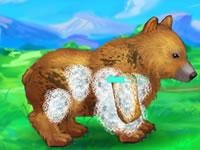 Jeu My Kind Bear