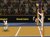 Jeu BunnyLimpics Volleyball